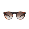 Kirk Originals Harvey Polished Tortoiseshell Front