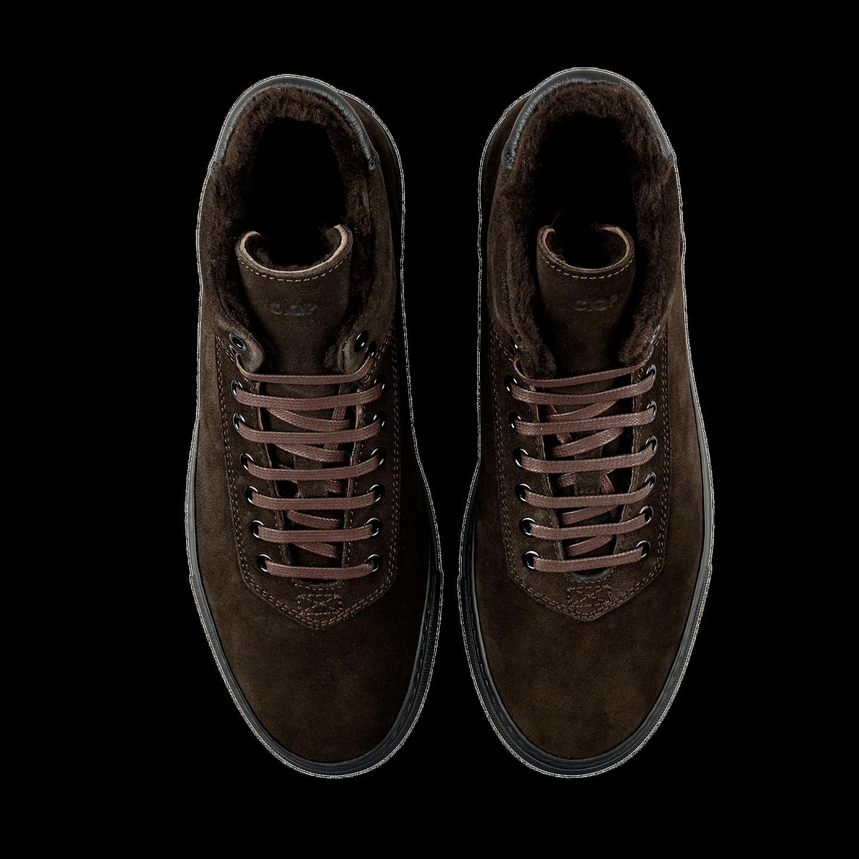 CQP Teddy Brown Montem Sneakers Top